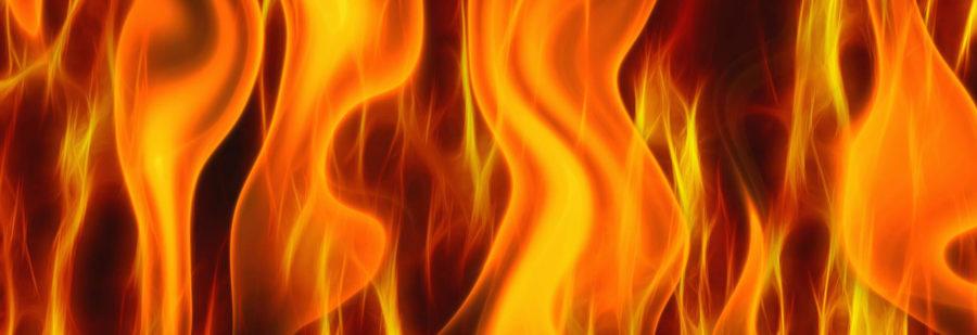 KokkerELLEN on fire_small